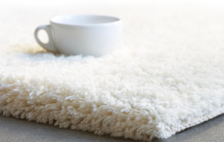 rug cleaning Services in Henderson, NC